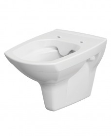 Nanuna Rimless Wall Hung Toilet with horizontal outlet and soft close seat