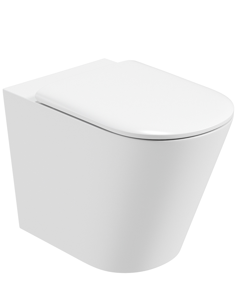 Roxy Wall Hung Rimless Toilet with Soft Close Seat
