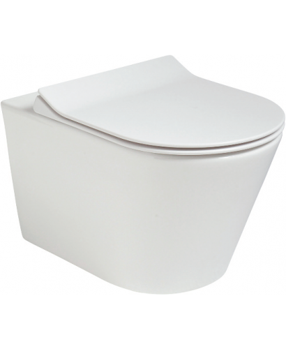 Roxy Back to Wall RIMLESS Toilet and Slim Soft Close Seat