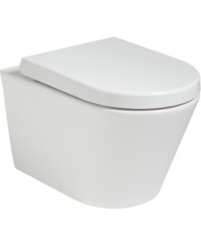 Roxy Back to Wall RIMLESS Toilet and Soft Close Seat