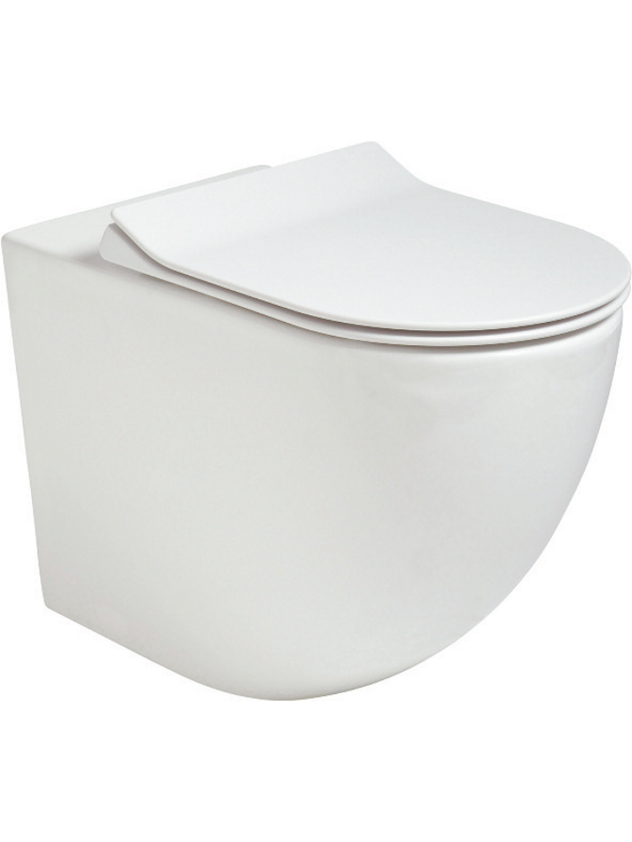 Tara Back to Wall RIMLESS Toilet and Slim Soft Close Seat