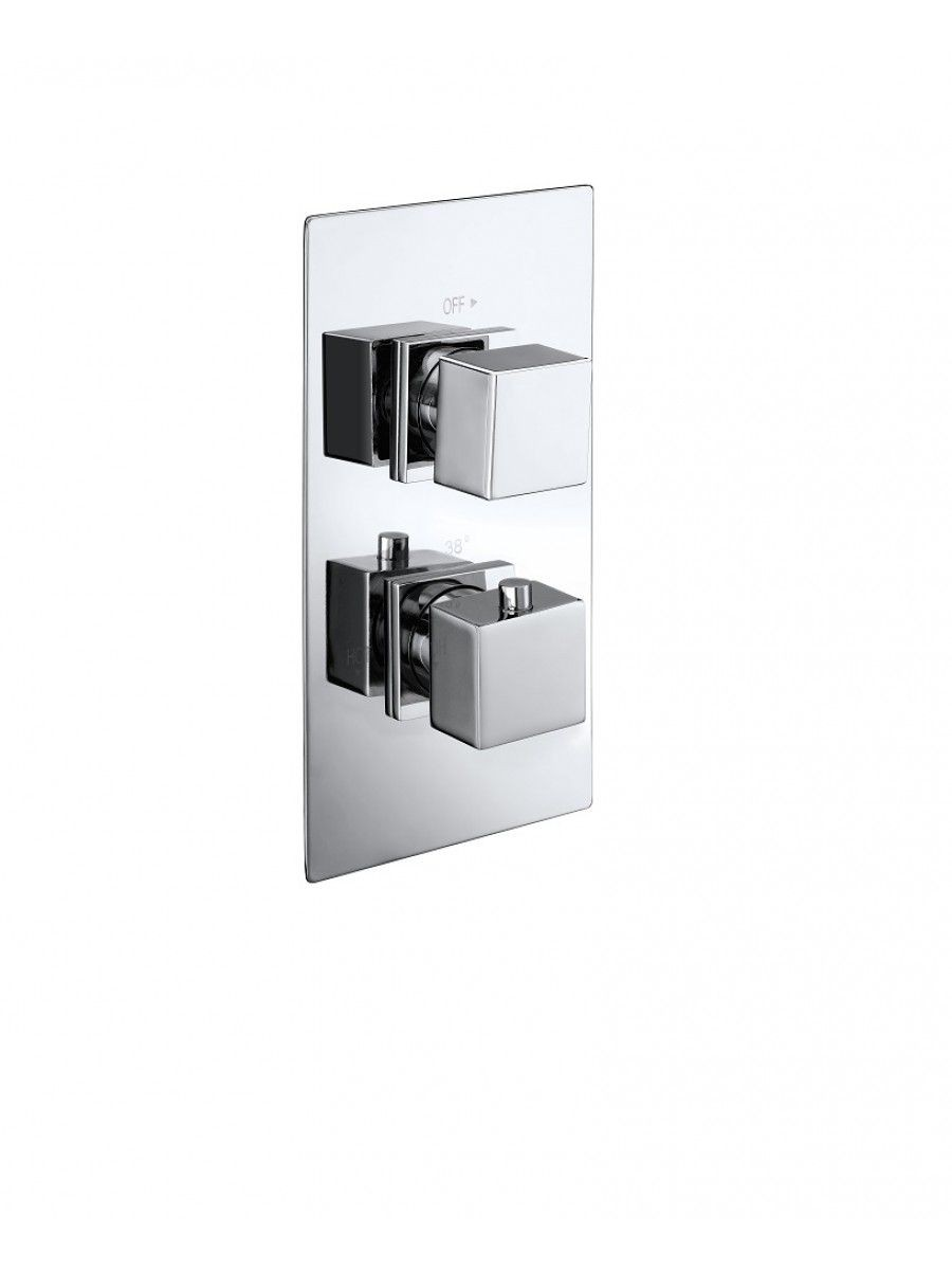 VICTORY Dual Control Shower Valve