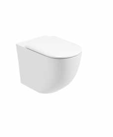 Tara Back to Wall RIMLESS Toilet and Soft Close Seat