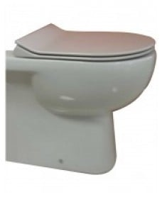 Tonique Back to Wall Toilet & SLIM Soft Close Seat